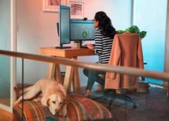 Microsoft predicts a hybrid new normal of work in Asia-Pacific